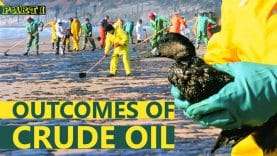 outcomes-of-crude-oil(1)