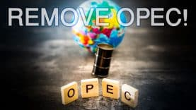 coverRemove-OPEC