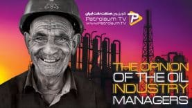 coverThe-opinion-of-the-oil-industry-managers