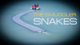 the-smggler-snakes-cover