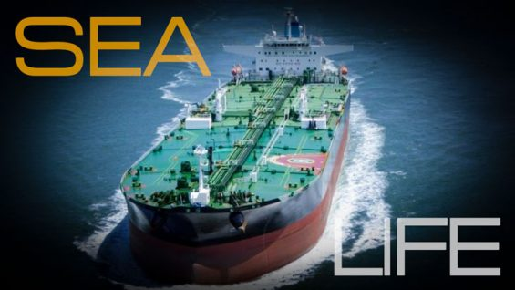 Sea-and-life-cover