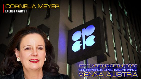 energy-analyst-Cornelia-Meyer