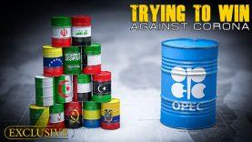 corona-vs-oil