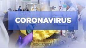 coronavirus122603