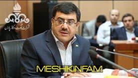meshkinfam082701